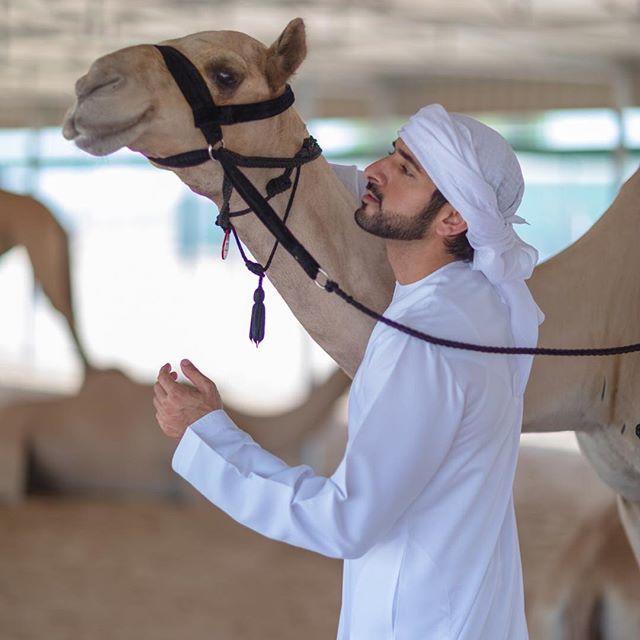 في ذكرى ميلاد ولي عهد دبي نظرة على أجمل صوره عبر إنستغرام
