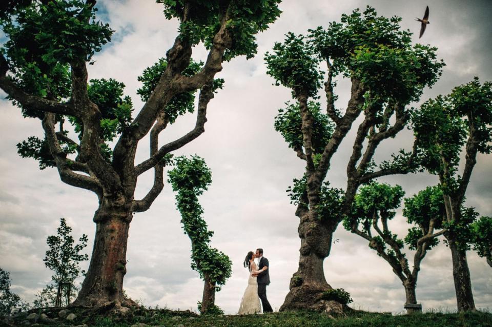 لقطات رائعة من حفلات زفاف تخطف الأنفاس