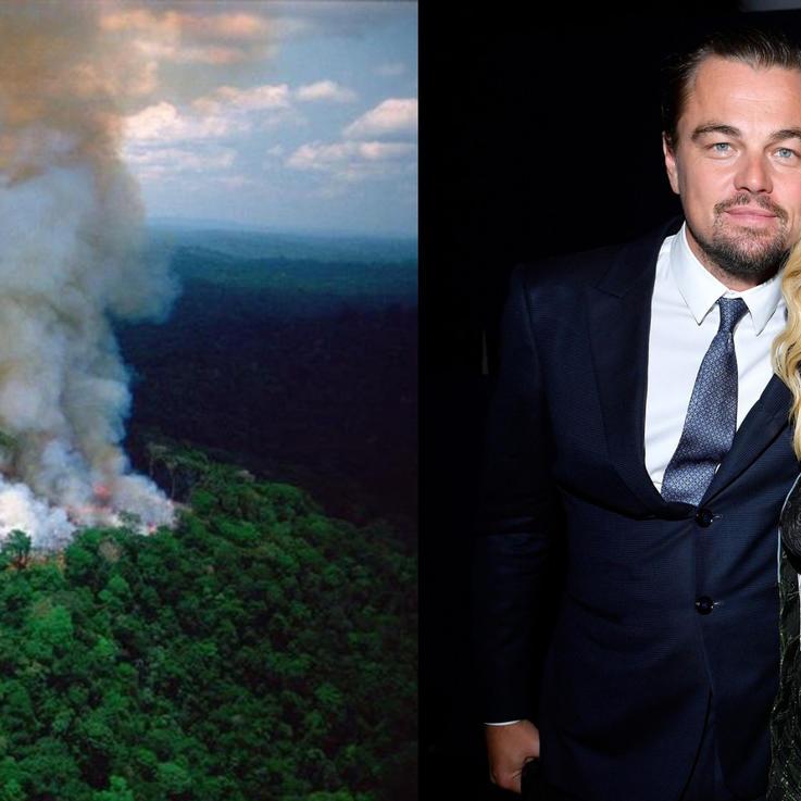 ليوناردو دي كابريو يتعهد ب18 مليون لإنقاذ الأمازون