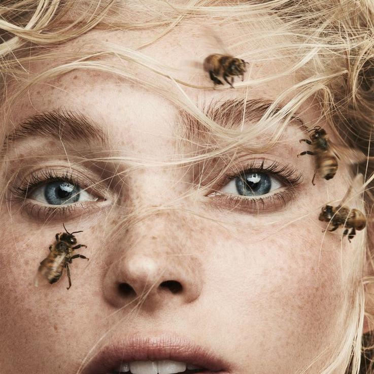ماهو غذاء ملكات النحل وماهي فوائده للحامل ؟